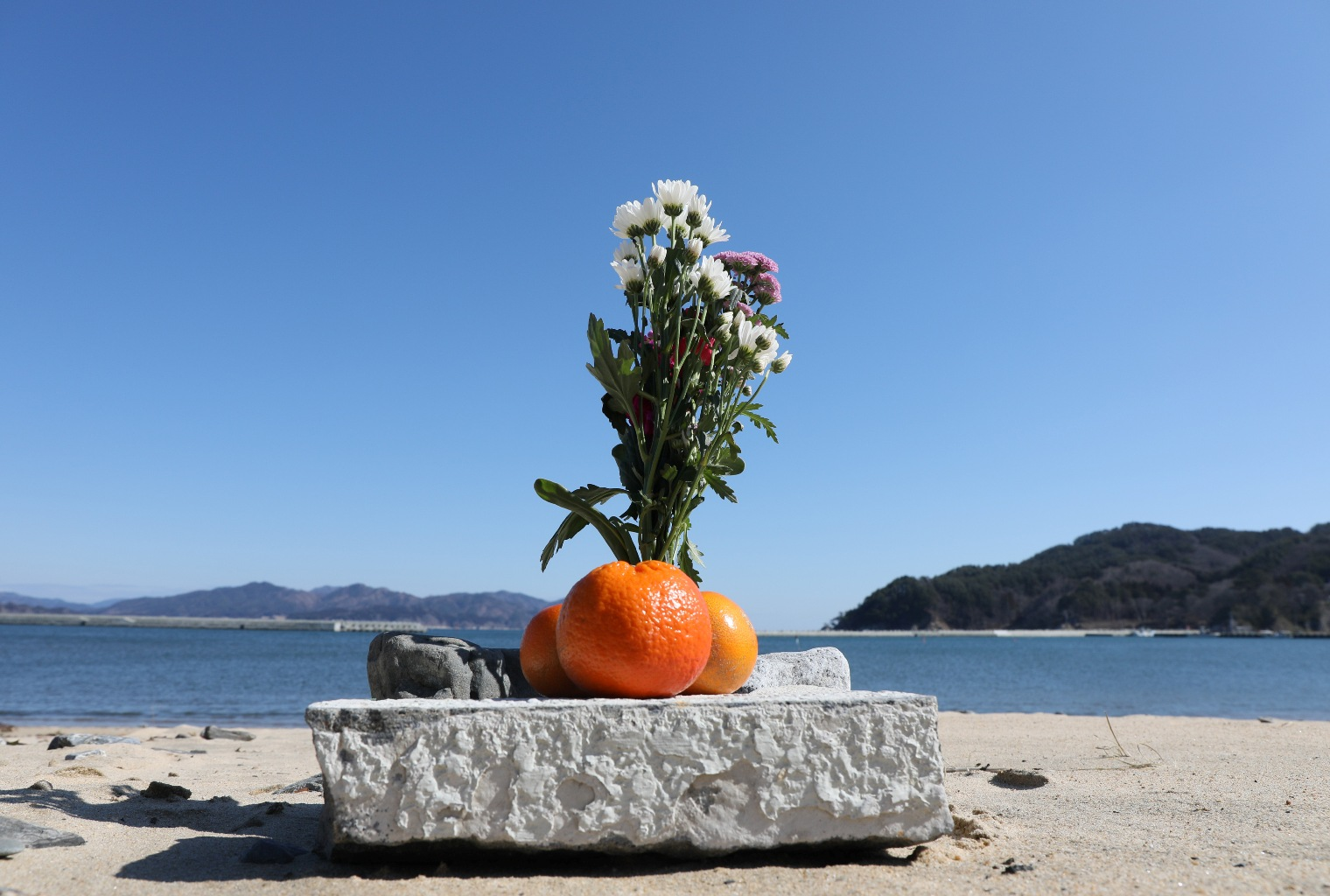 Flower and oranges at the Yoshiuri coast