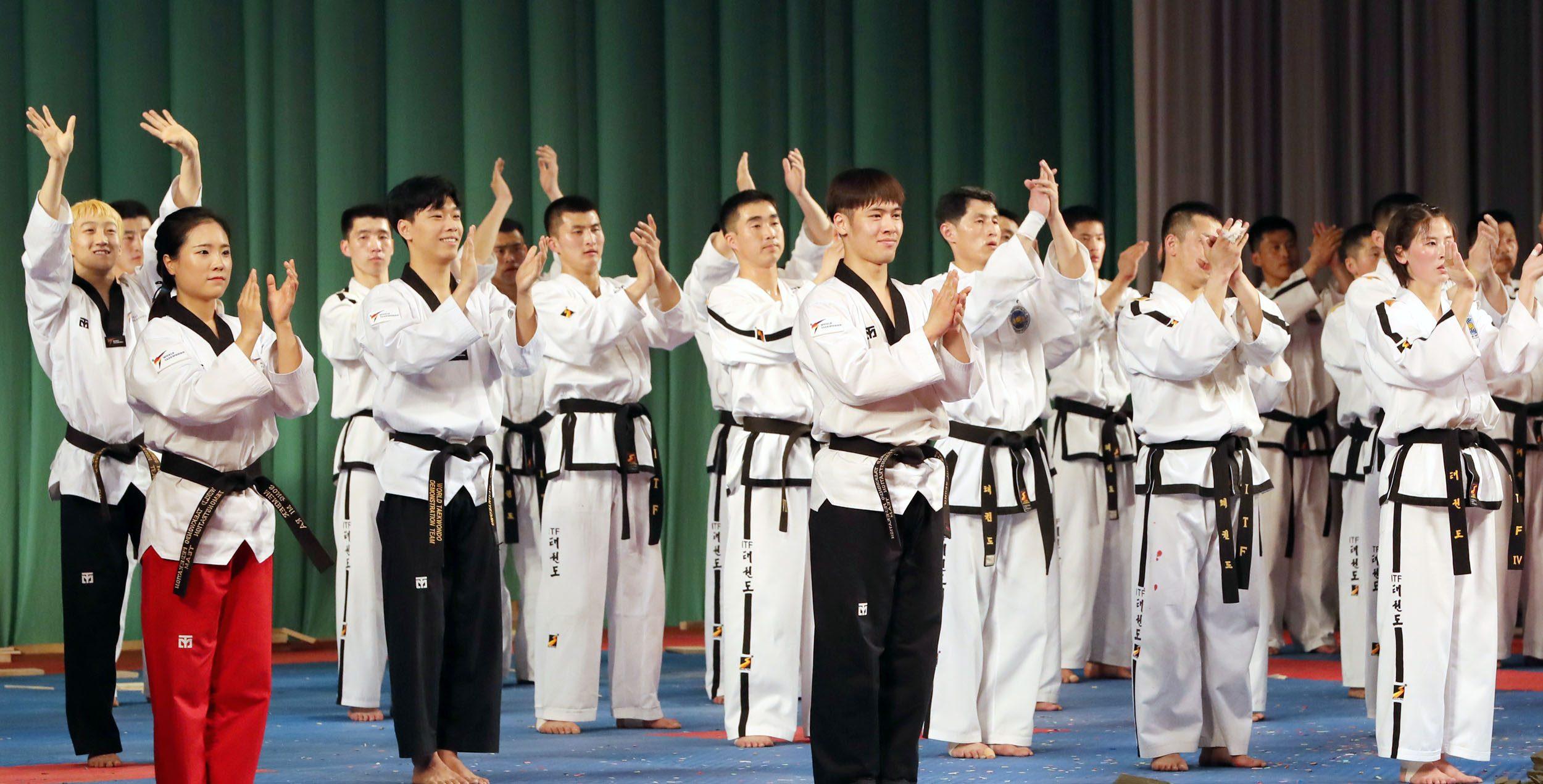 Joint taekwondo event of South and North Korea