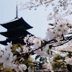 Kyoto - BillydKid