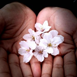 Touch my Little Blossom - Richard Dims Villagonzalo Clarin