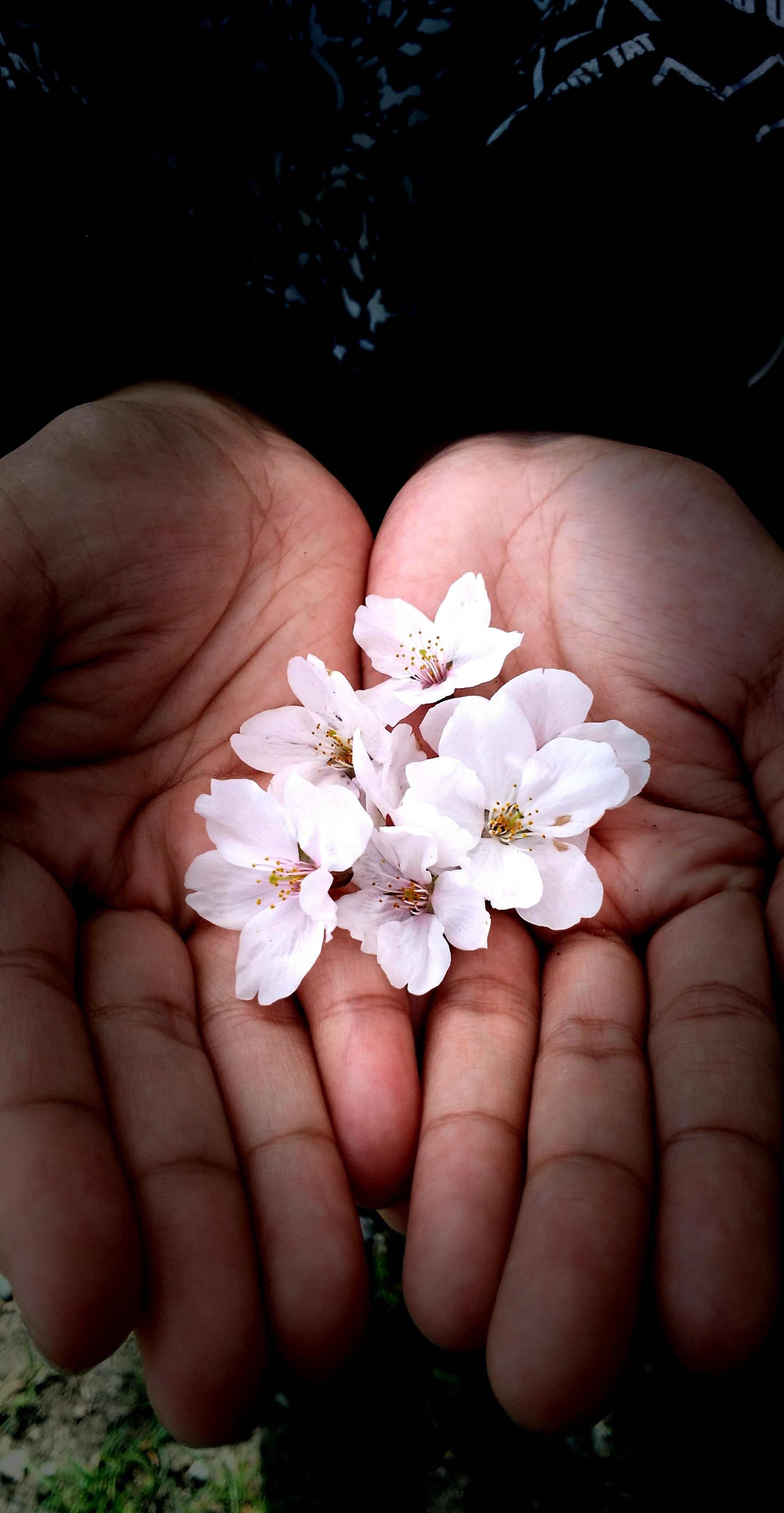 Touch my Little Blossom – Richard Dims Villagonzalo Clarin