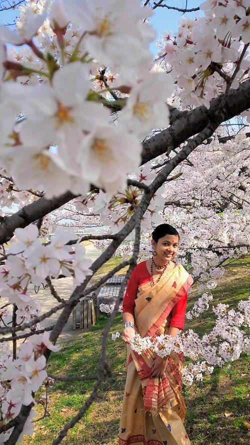 In Indian attire amidst Sakura – PURBA