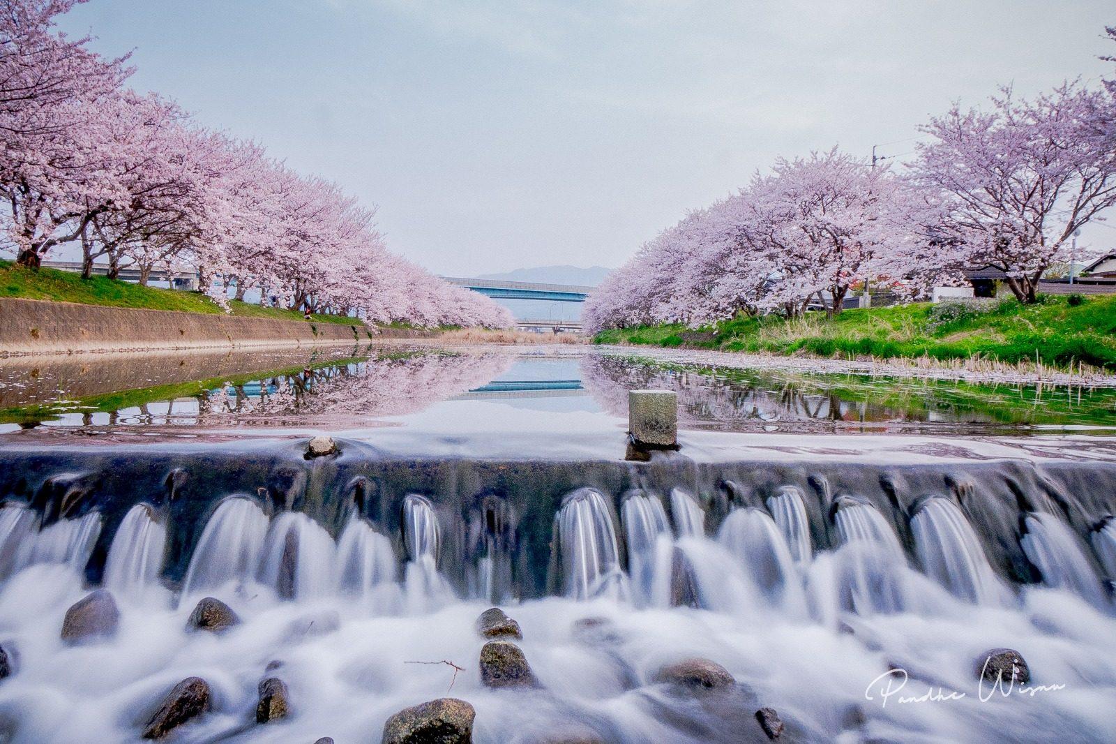 Pandhe Wisnu – The peaceful beauty