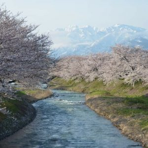 Grace Yamaholic - Asahi machi toyama ken mt Sougadake and Mt Komagadakebehind