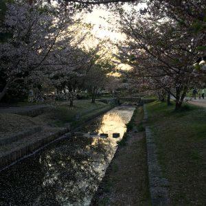 Bogna Grazyna Jaroslawski - Hiroshima