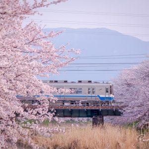Gde Pandhe Wisnu Suyantara - A train that takes me home