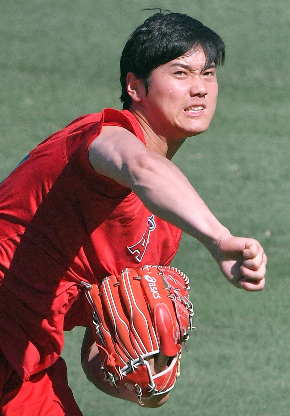 Shohei Ohtani Recovering from Injury, Won't Pitch in 2019