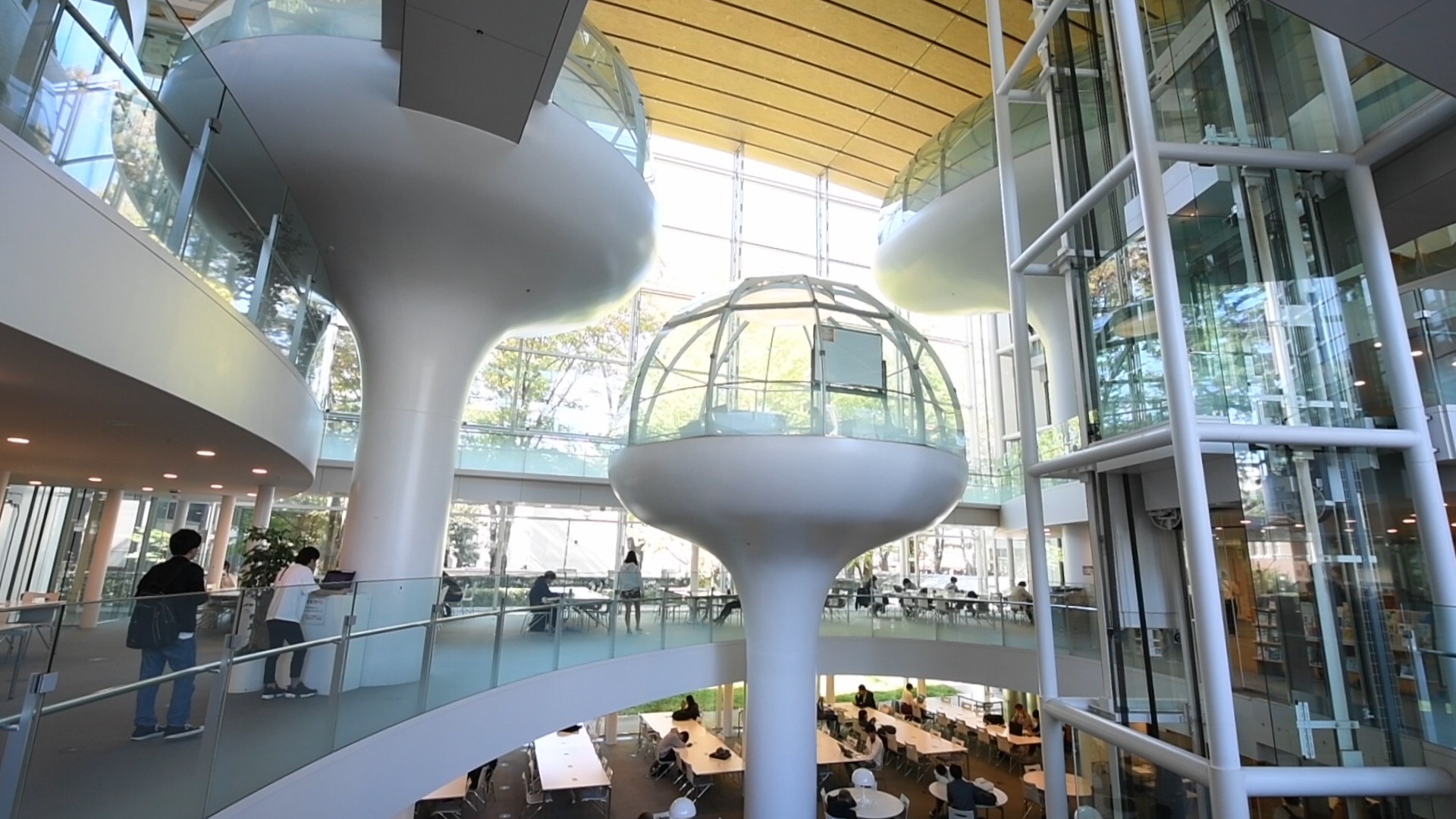 [Hidden Wonders of Japan] Spaceship or Library? It's Both at Seikei University