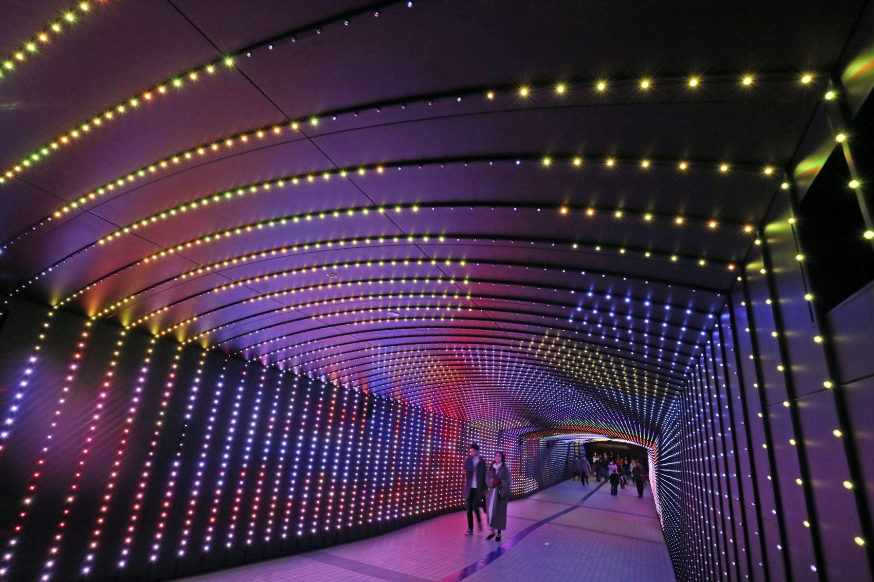 Tokyo Mega Illumination at Oi Racecourse
