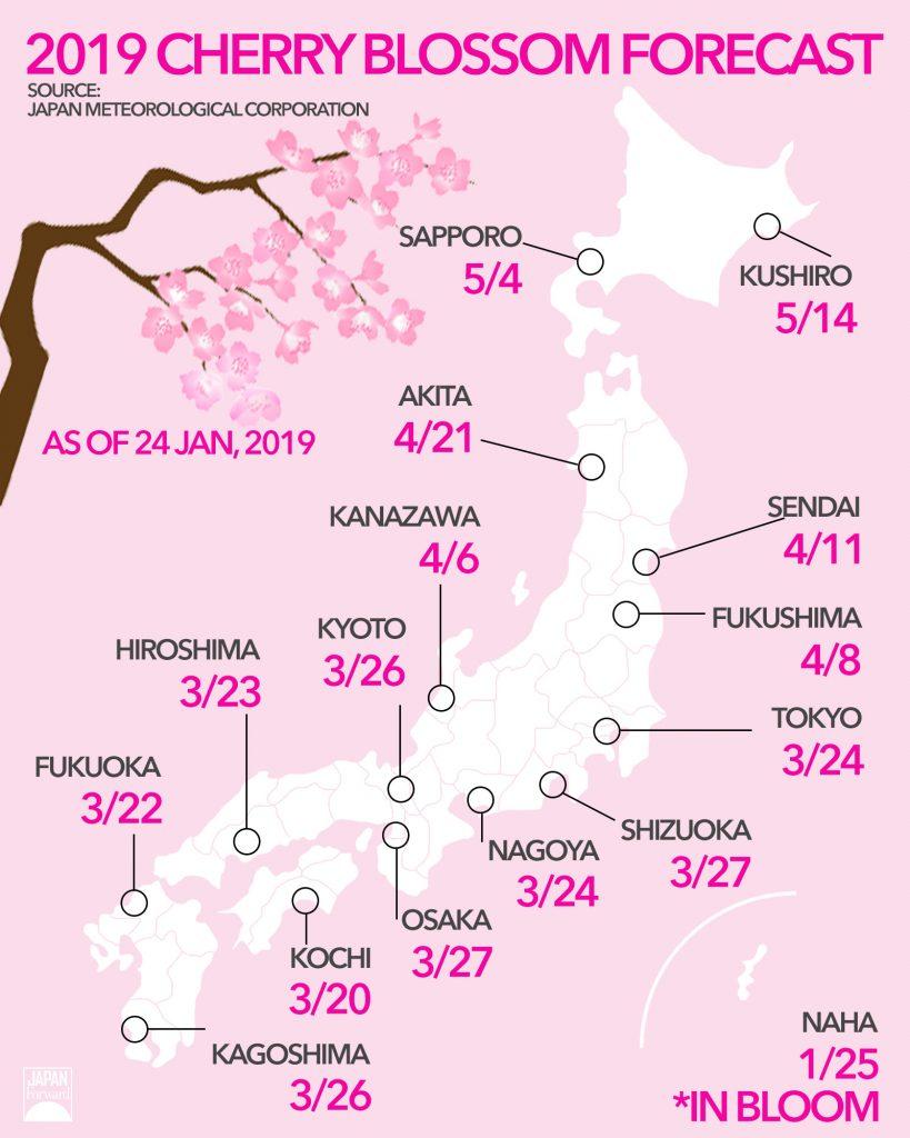 2019 Cherry Blossoms Forecast From Kyushu To Hokkaido Japan Forward