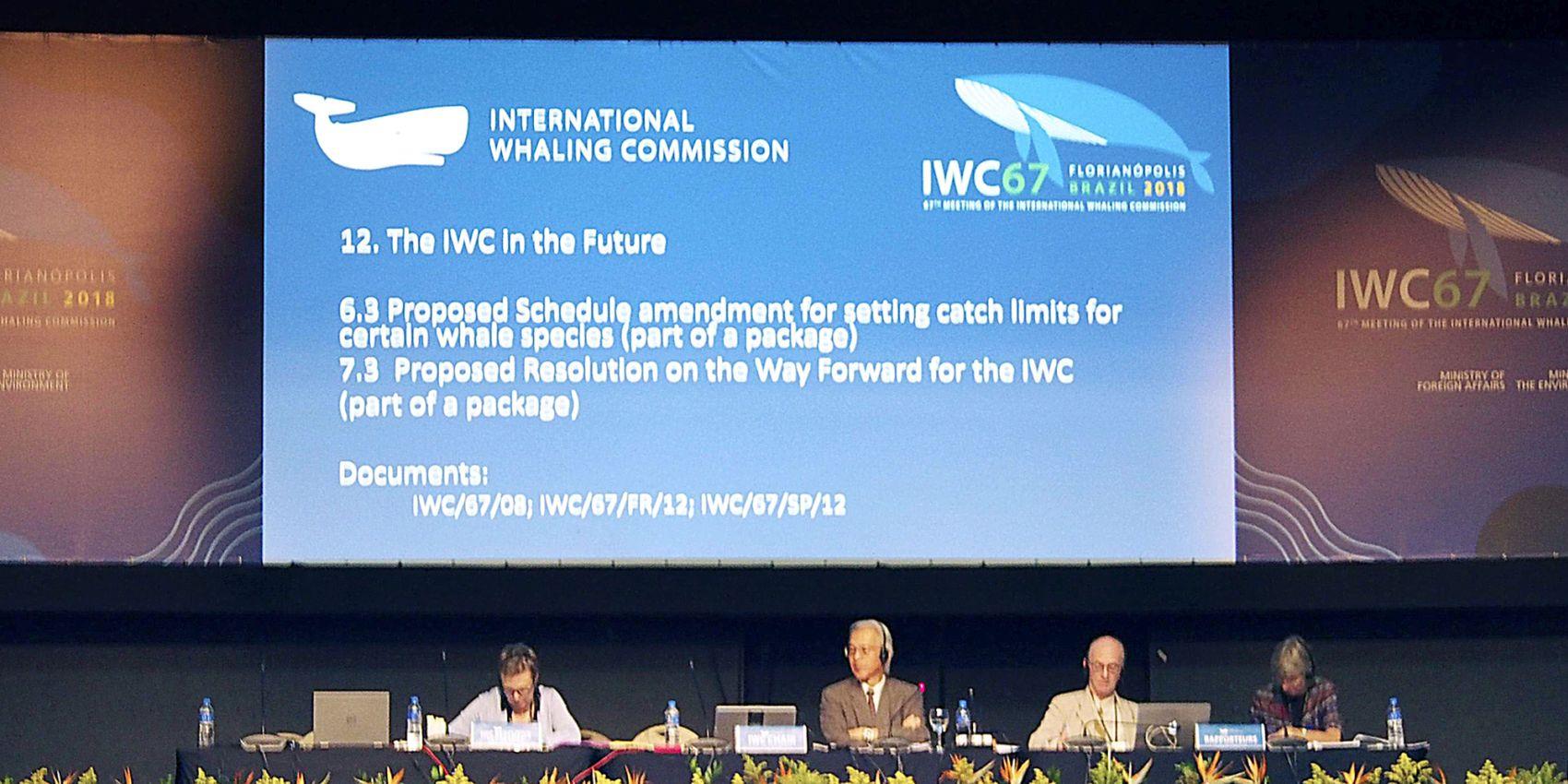 Japan Whaling IWC 002