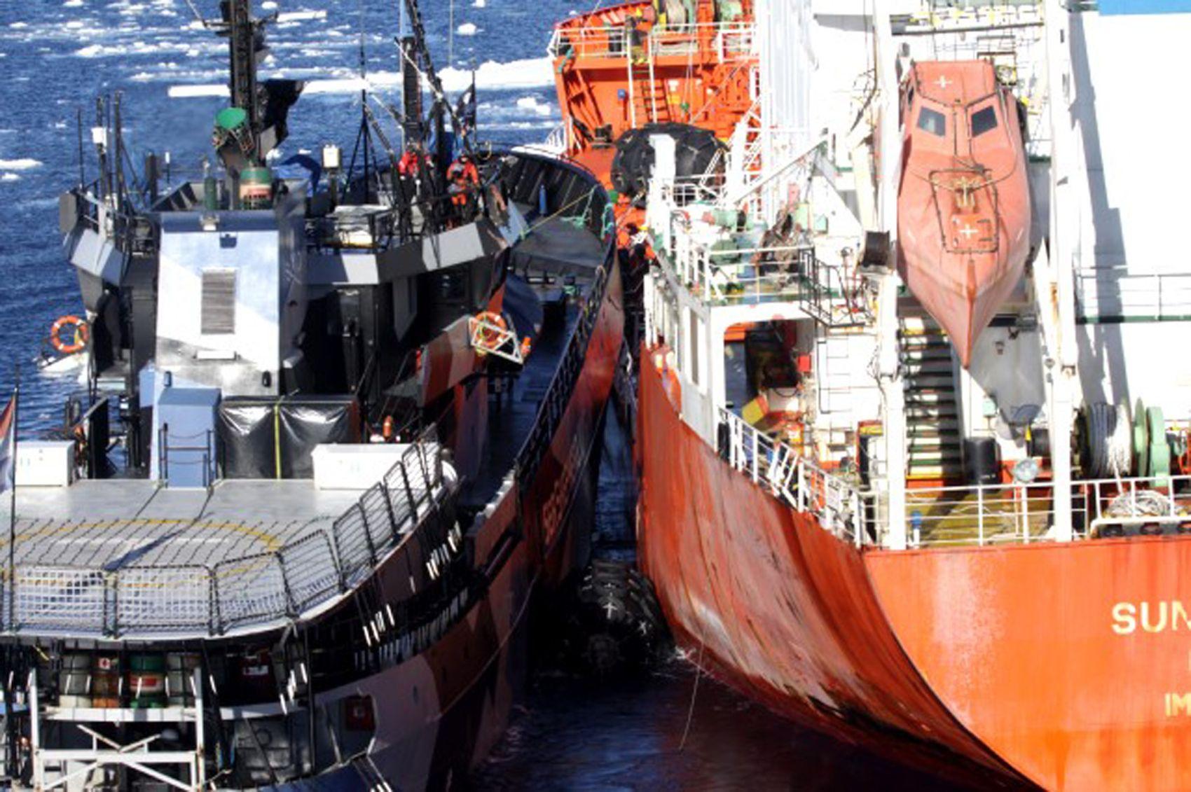 Japan Whaling IWC 006