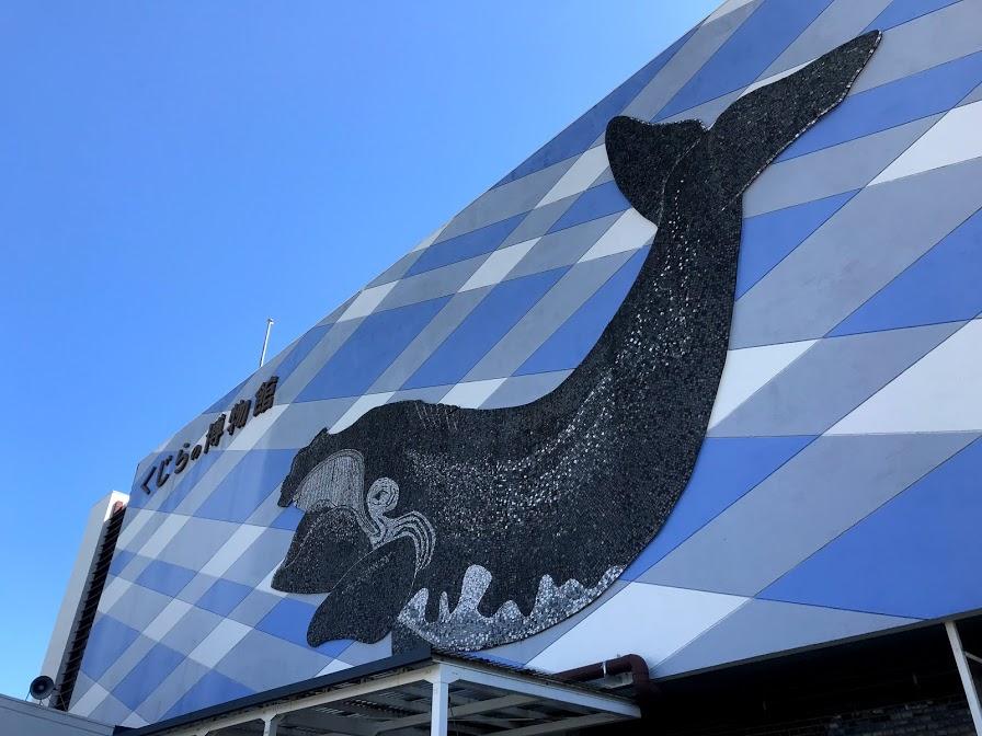 Taiji Whale Town Wakayama Controversy