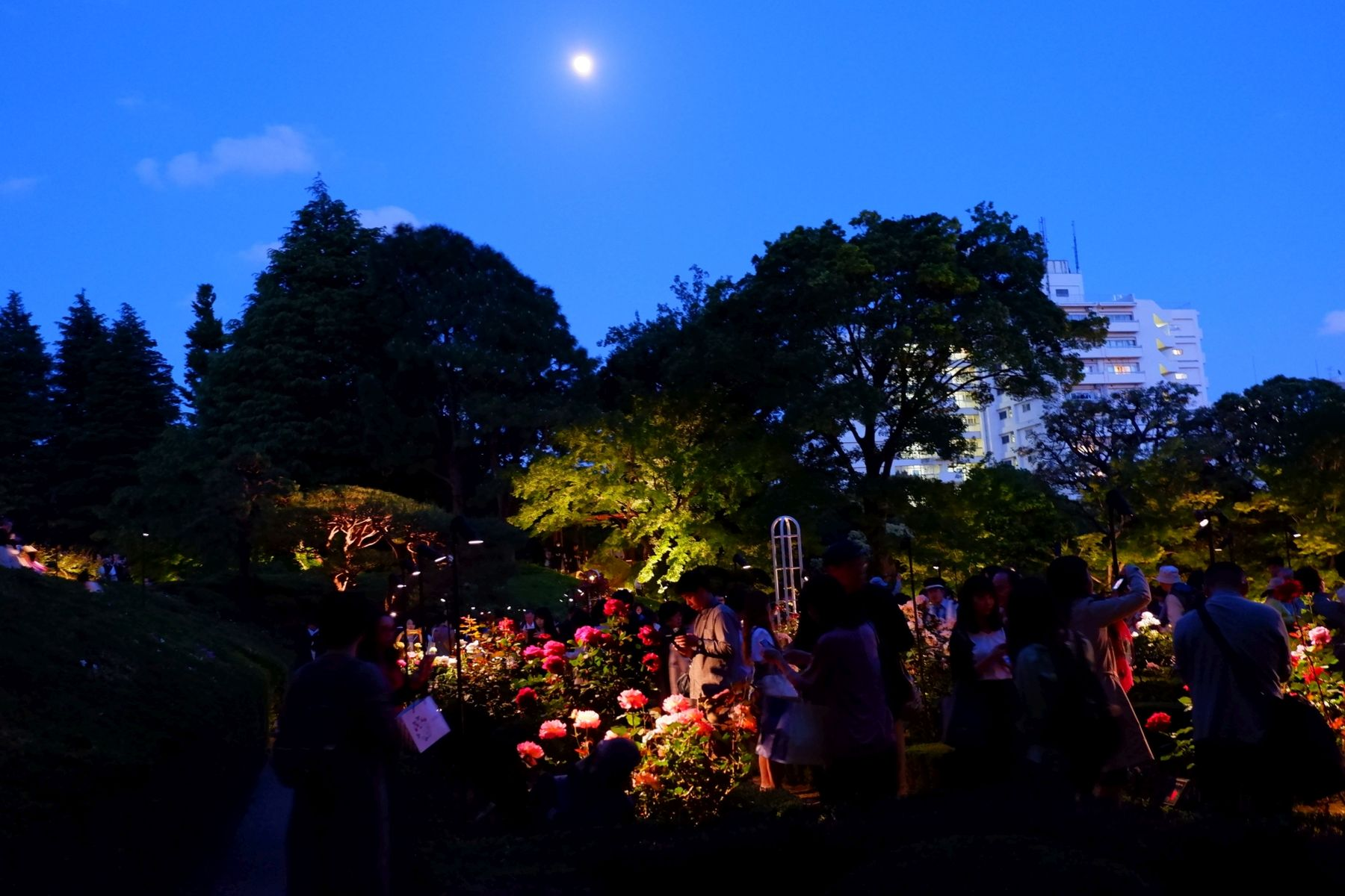 Japan Gardens of Wealth Furukawa teien 033