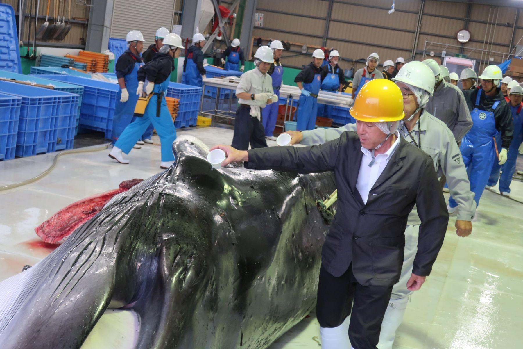 Japan Kushiro Commercial Whaling 004