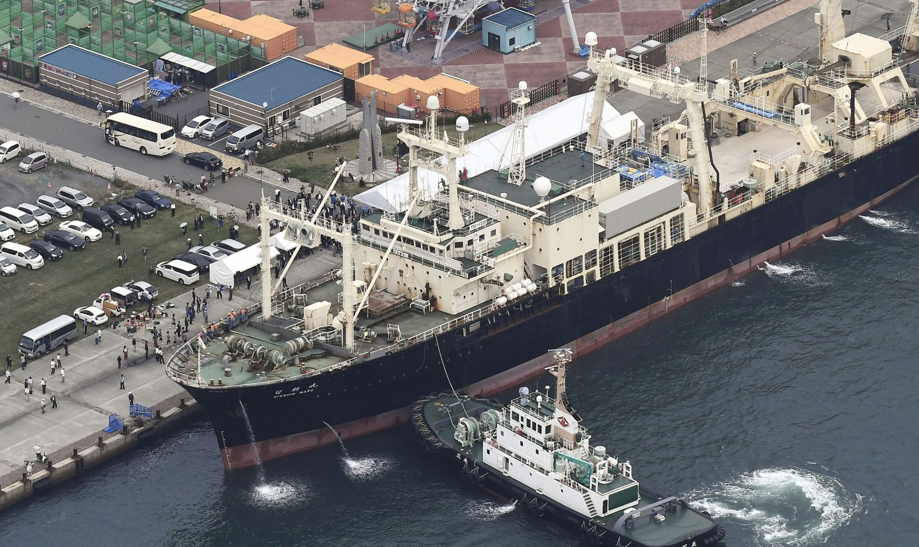 Japan Resumes Commercial Whaling 011