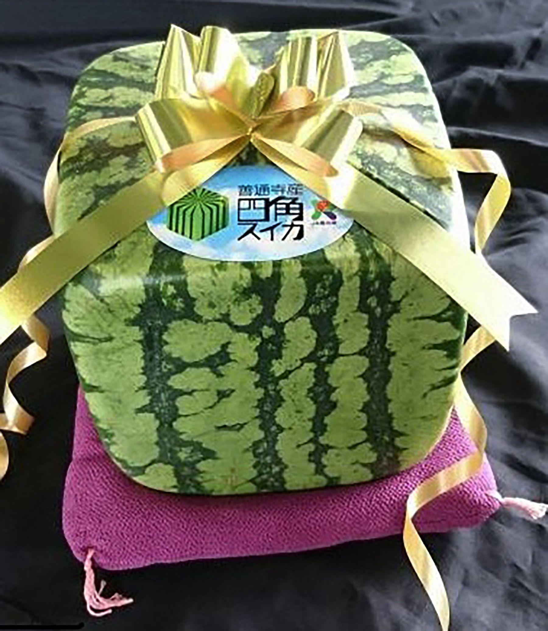 Japan Squre Water Melon 001