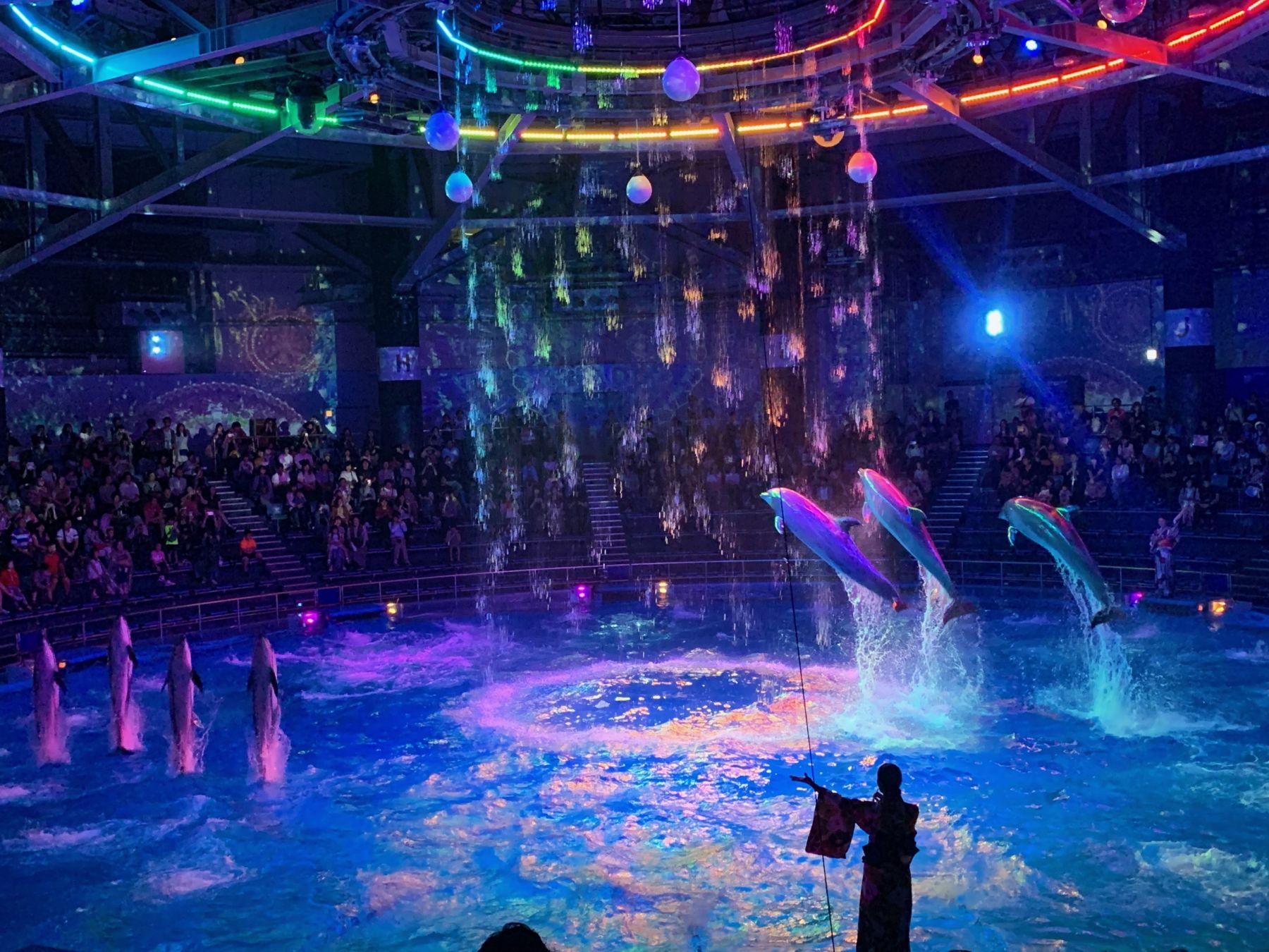Japan Aquariums Proud Mission_ Educating People, Preserving Dolphins 004