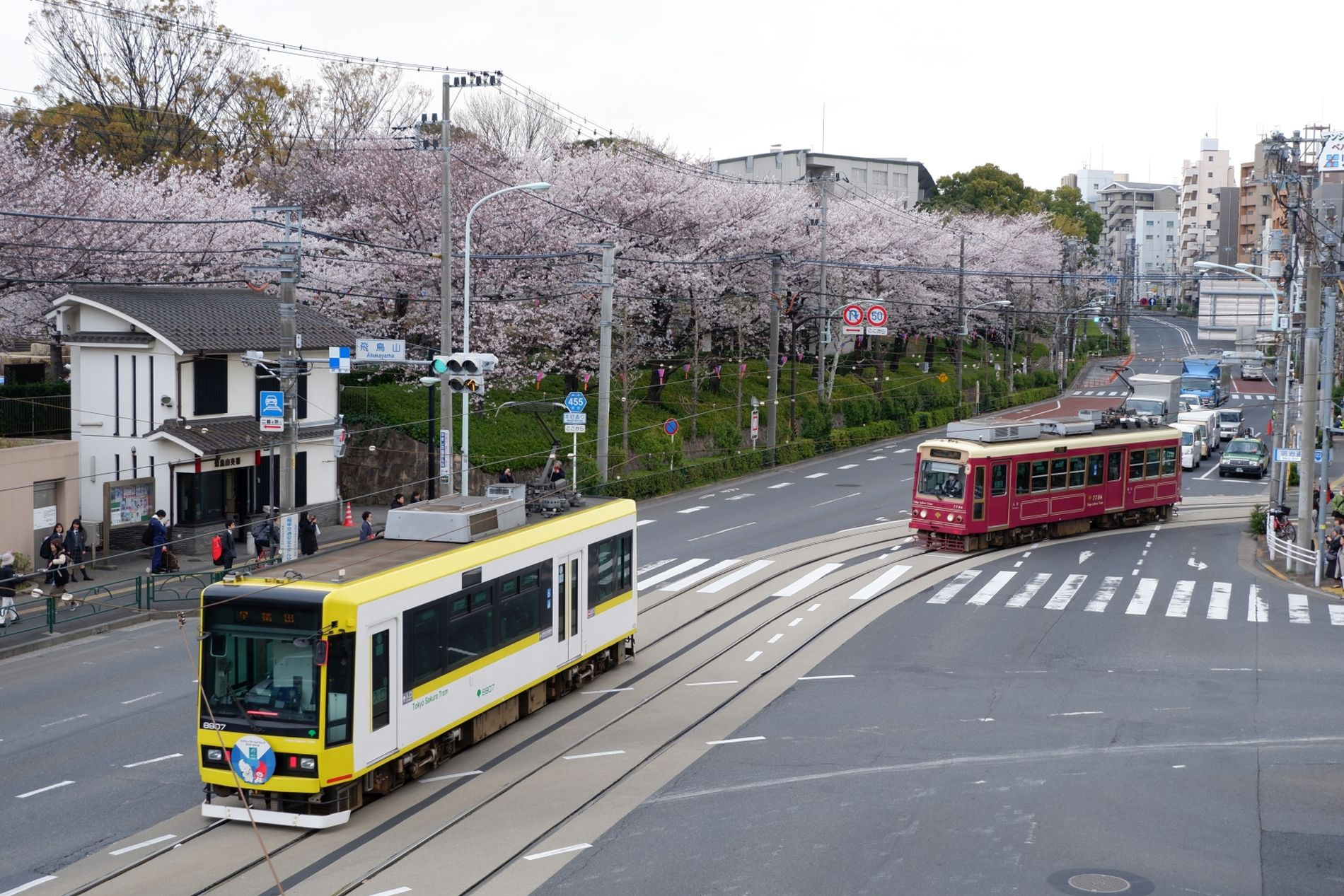 Japan Trams Through the Blossoms Discovering Tokyo on the Setagaya Line 001