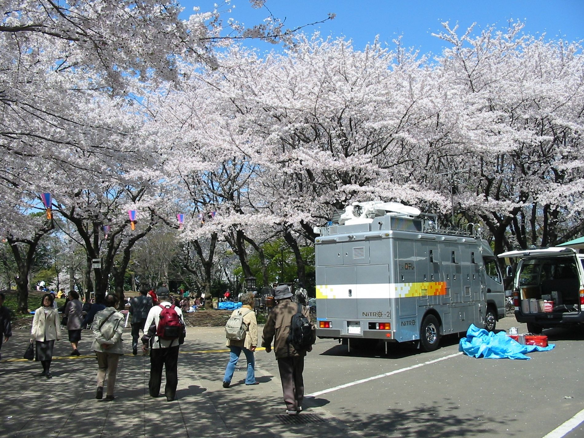 Japan Trams Through the Blossoms Discovering Tokyo on the Setagaya Line 004
