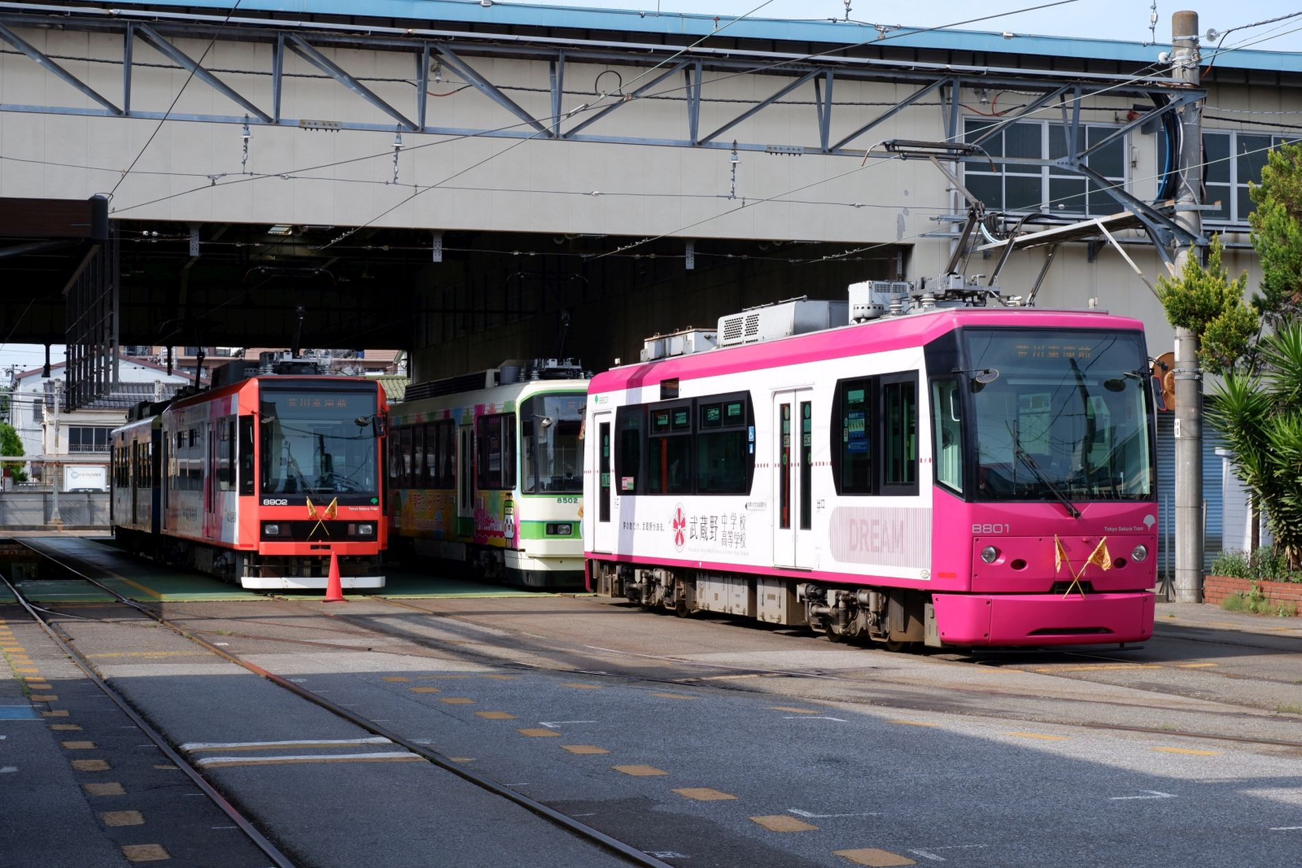Japan Trams Through the Blossoms Discovering Tokyo on the Setagaya Line 014