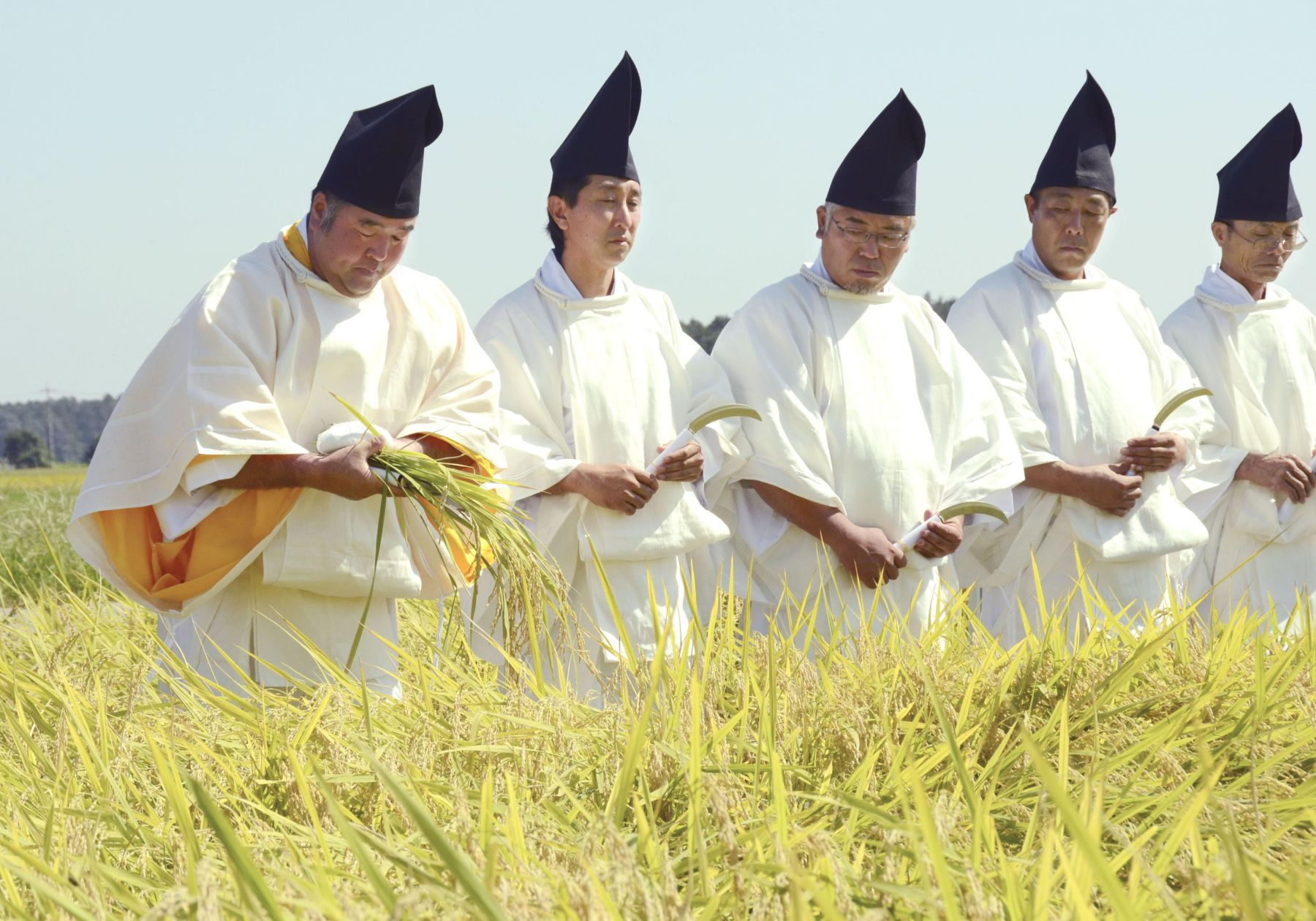Hidden Wonders of Japan Harvesting Rice for the Imperial Succession 001