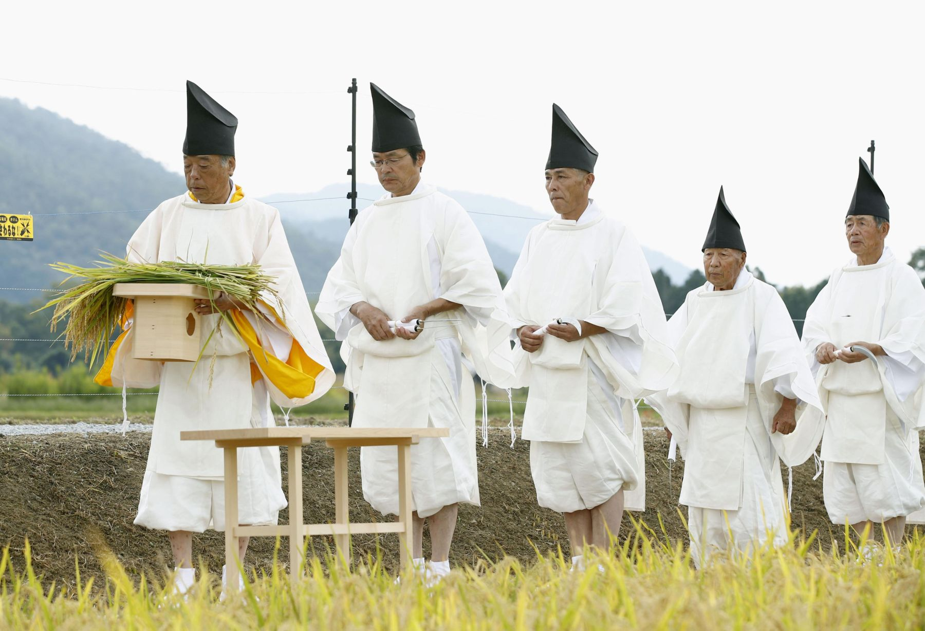 Hidden Wonders of Japan Harvesting Rice for the Imperial Succession 005