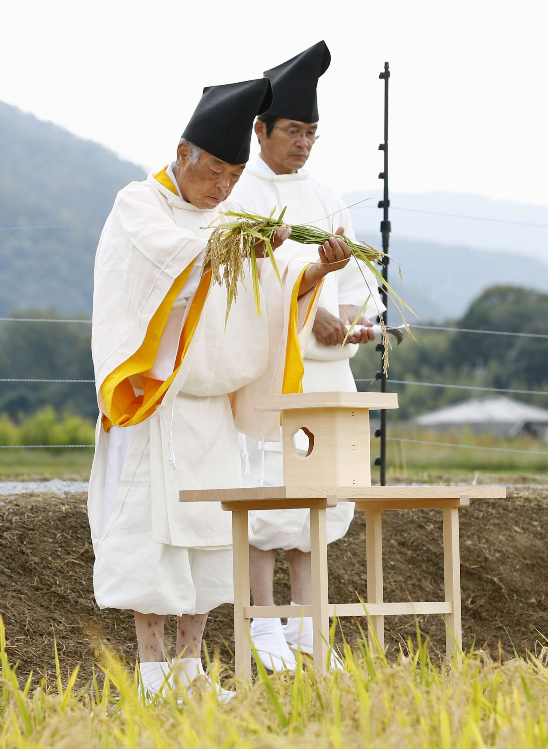 Hidden Wonders of Japan Harvesting Rice for the Imperial Succession 006