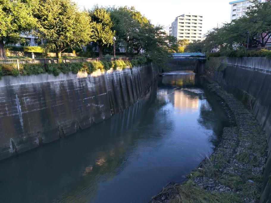 sdr Arakawa – channelized Shakujigawa near Koga