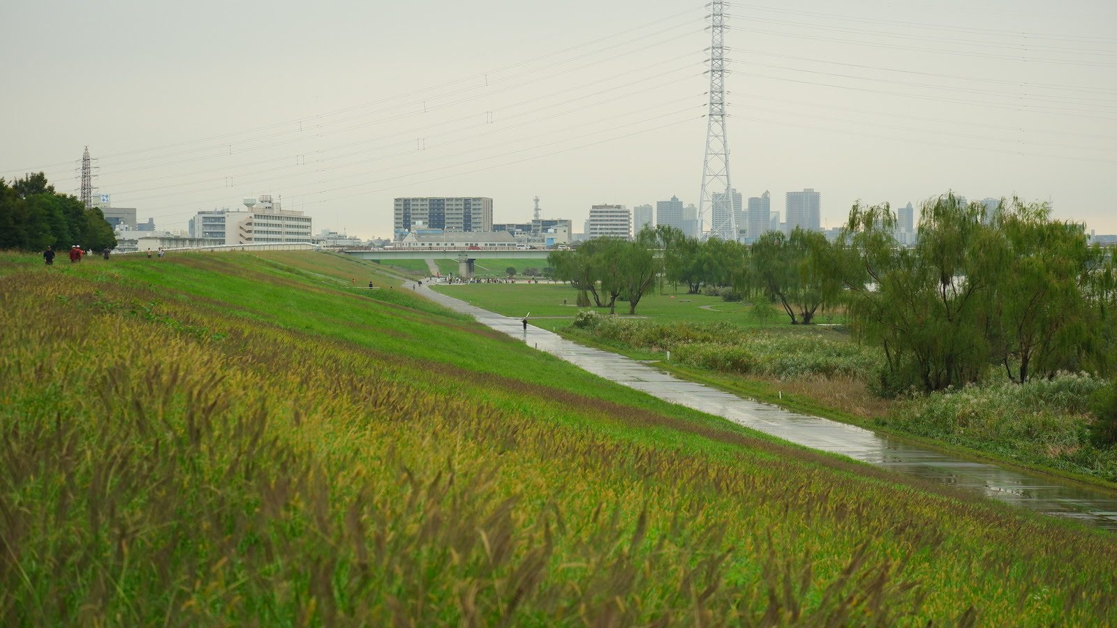 14 Arakawa – cycling–dscf2743
