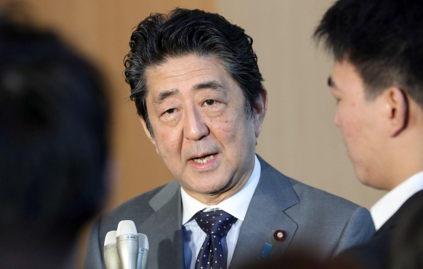 Japan Cherry Blossoms Politics Sakura wo miru kai