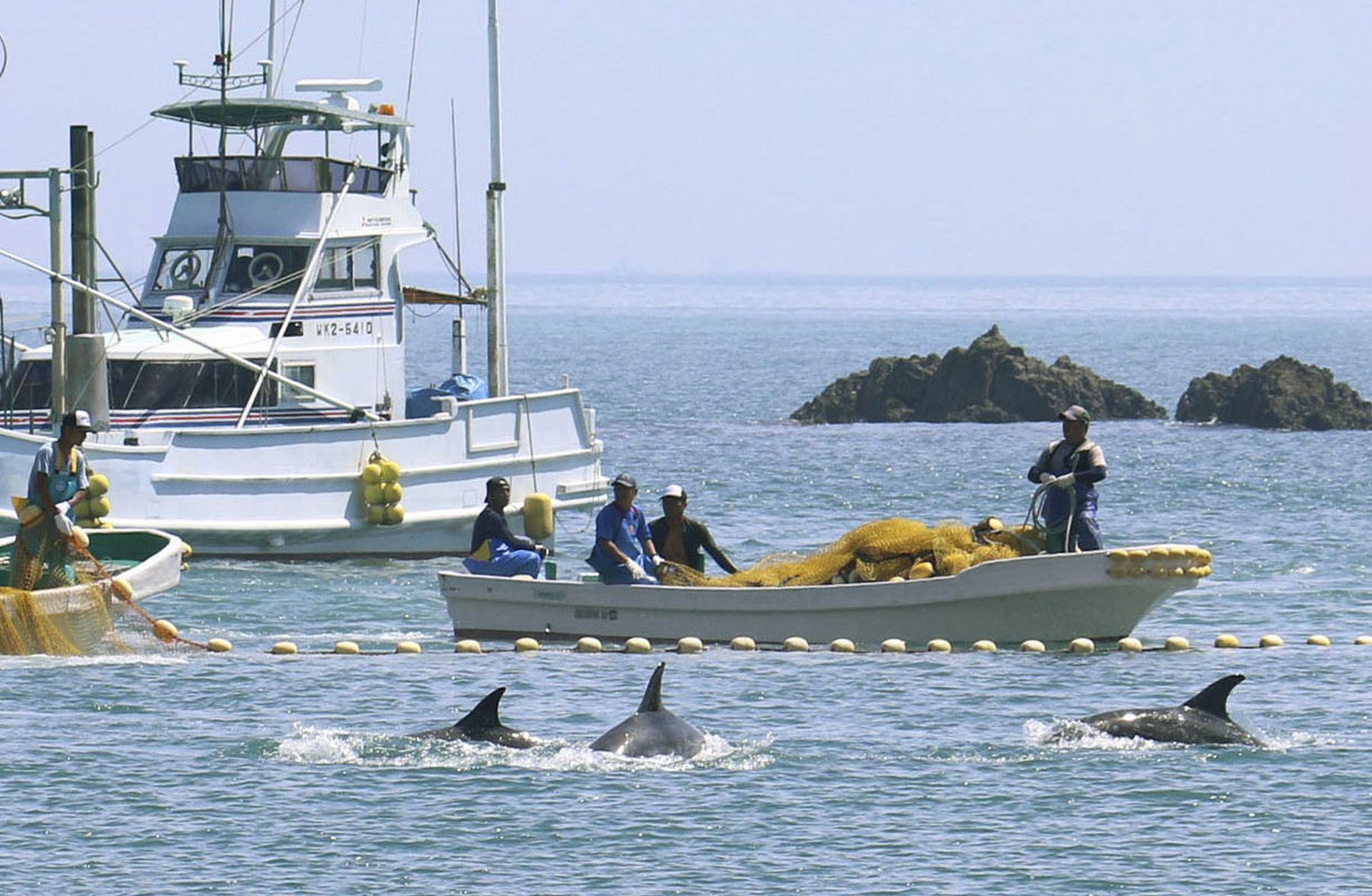 Japan Whaling 006