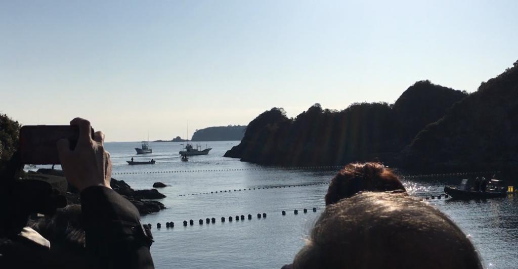 LDP members observe a drive hunt in Taiji