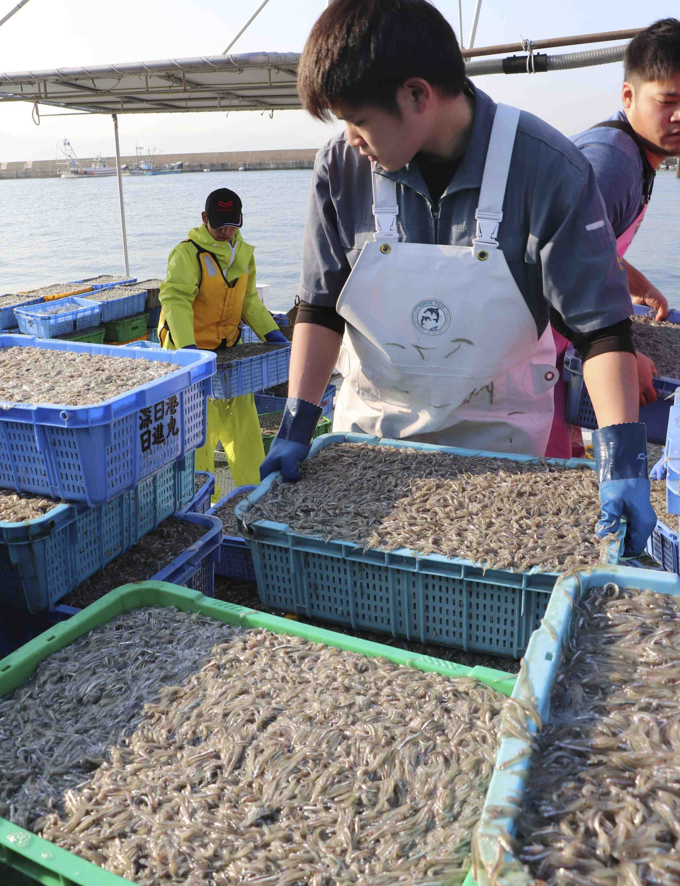 Japanese Food Import Restriction Fish and Seafood 001