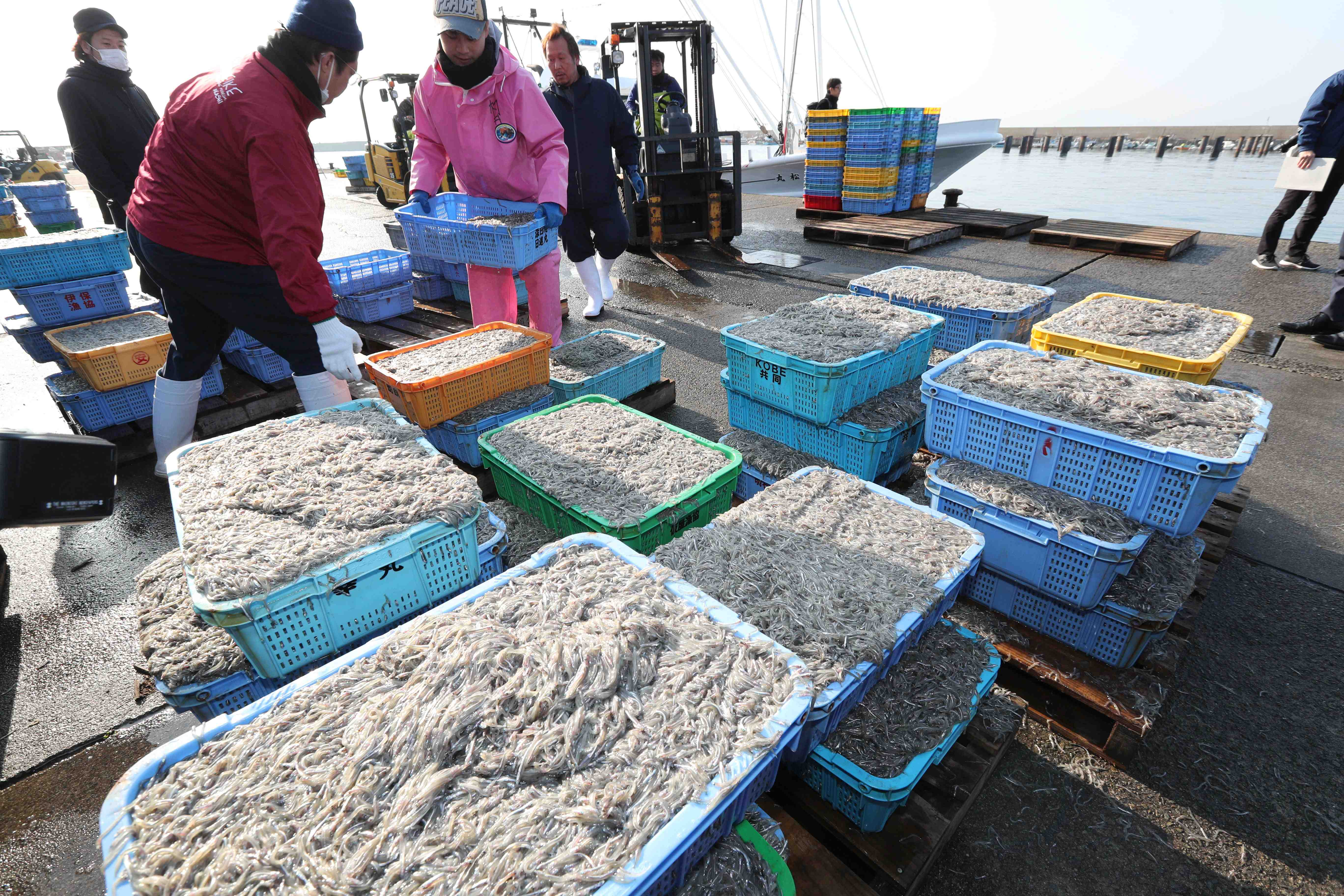 Japanese Food Import Restriction Fish and Seafood
