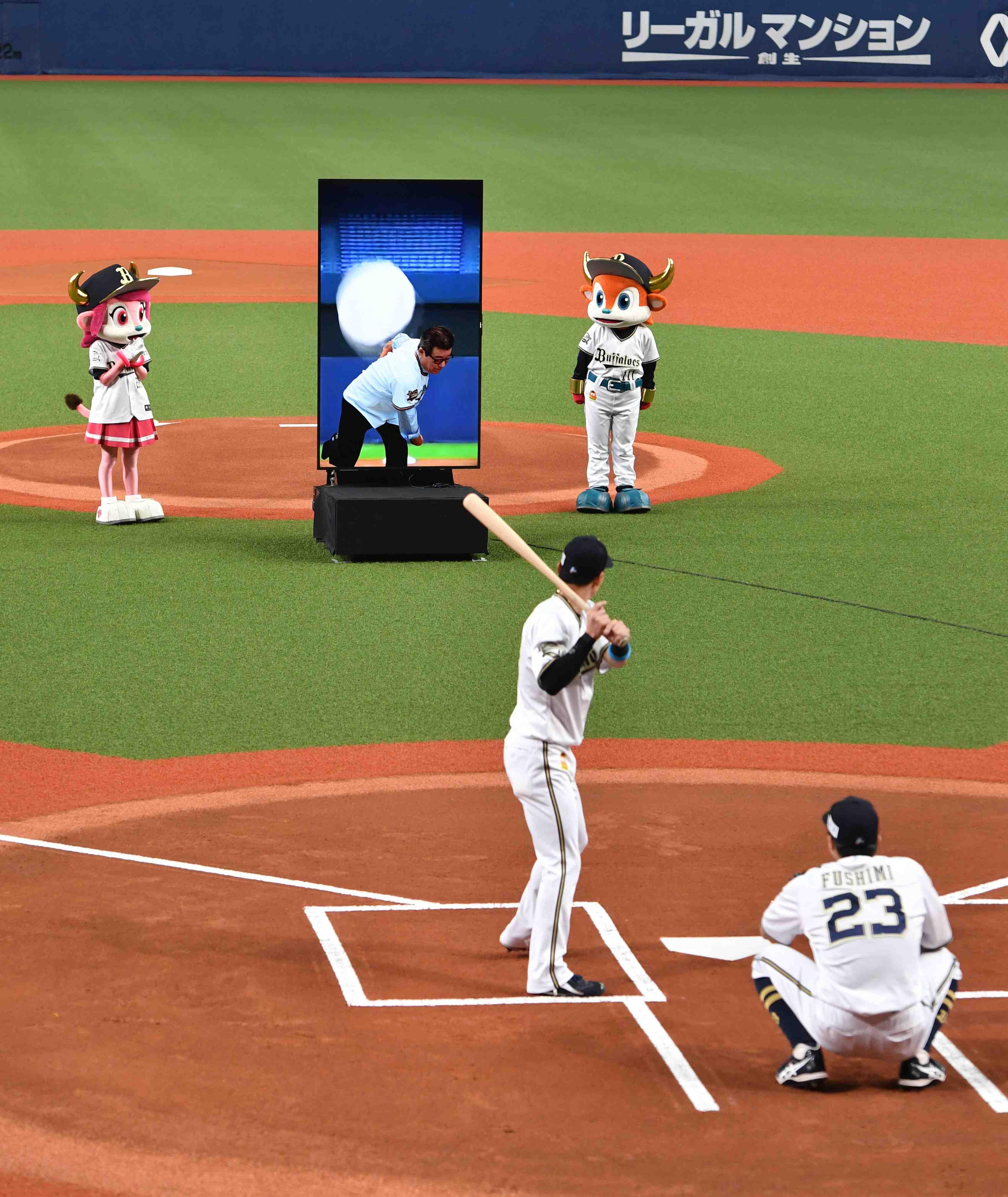 Baseball Japan NPB