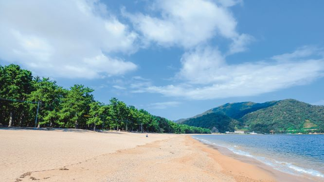 """""""Kehi no Matsubara"""" is a scenic spot of Japan. The contrast between the vast sandy beach of about 400,000m2 and the pine forest of 17,000 trees has long been loved by the people."""