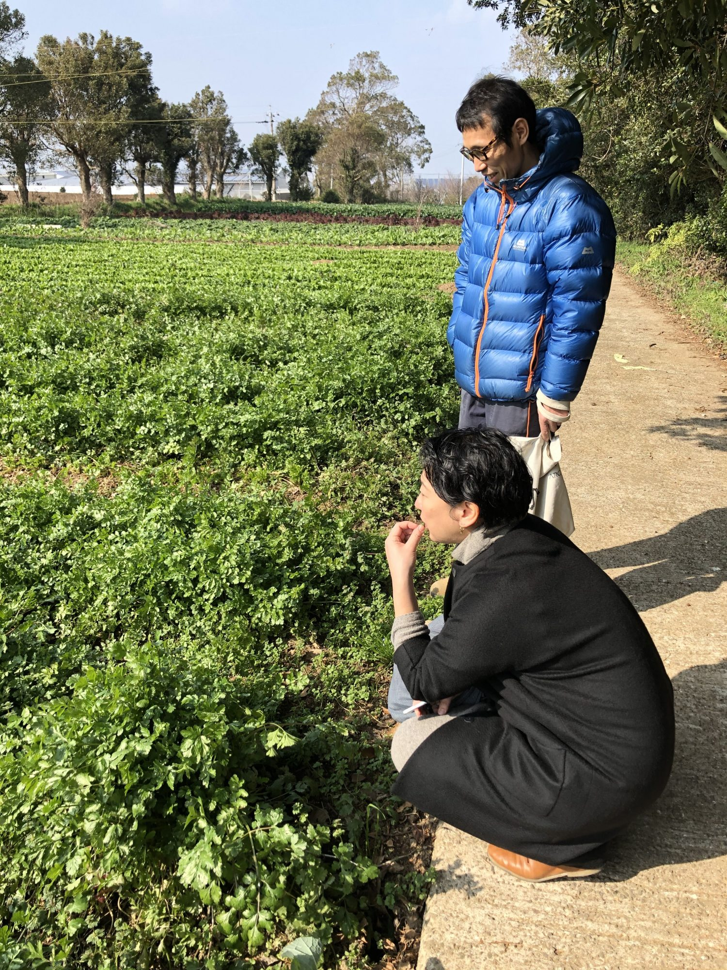 Arts Exchange Masayo visiting local farm in Unzen