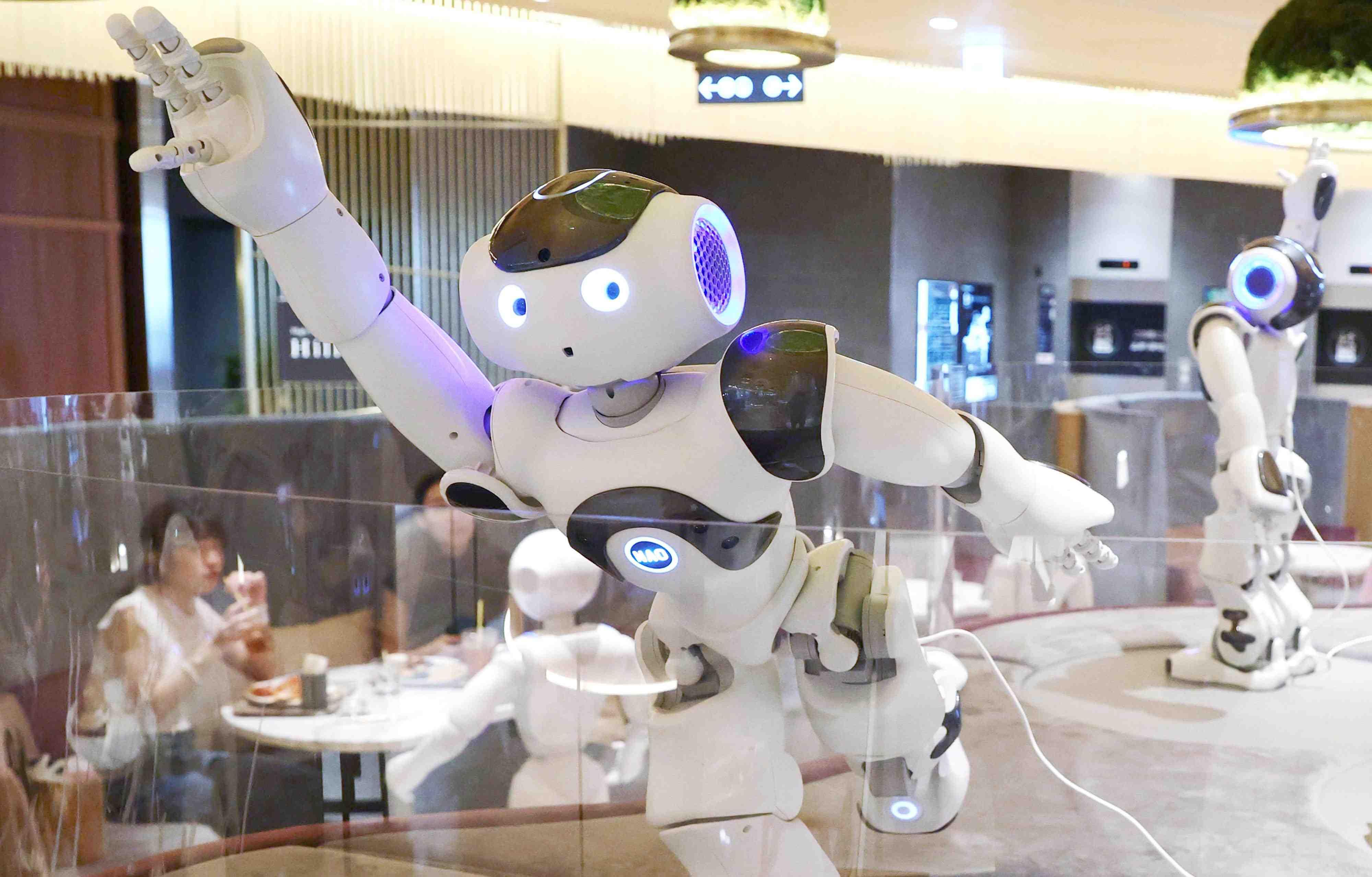 Robot in Japan 017