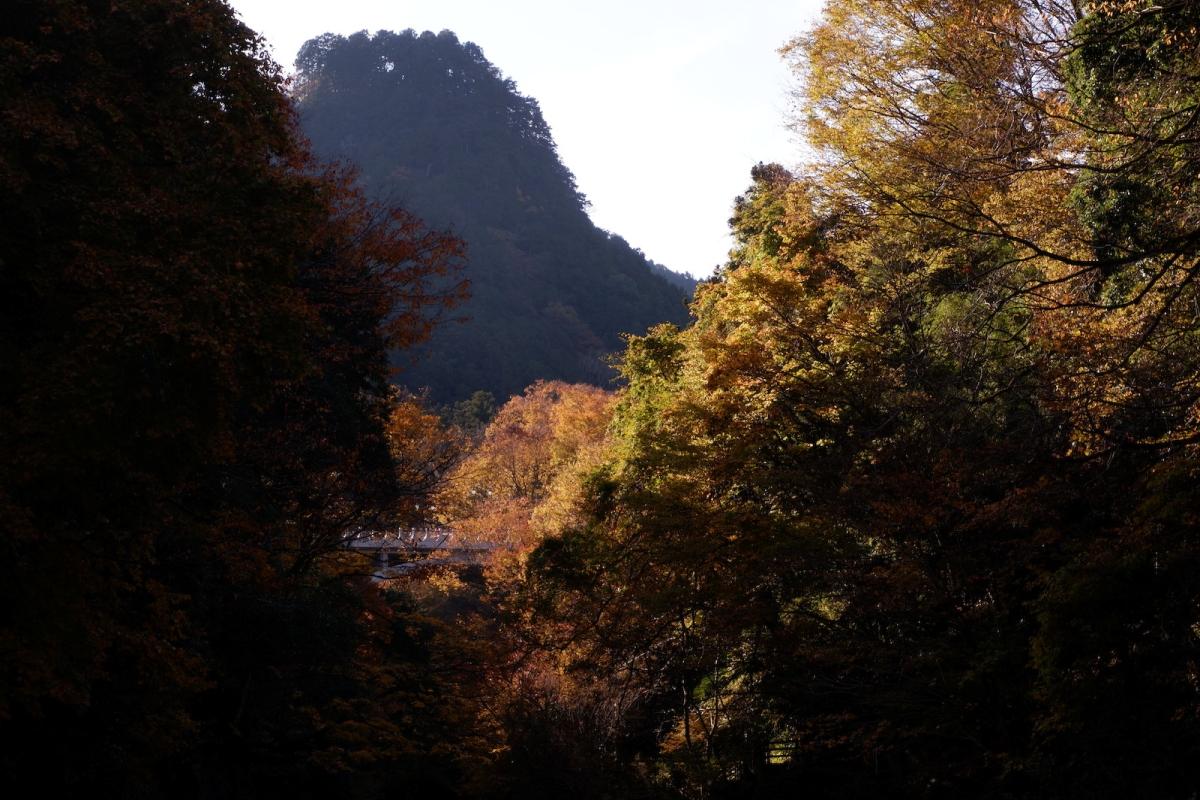11-valley-colors–ehk-dscf4485
