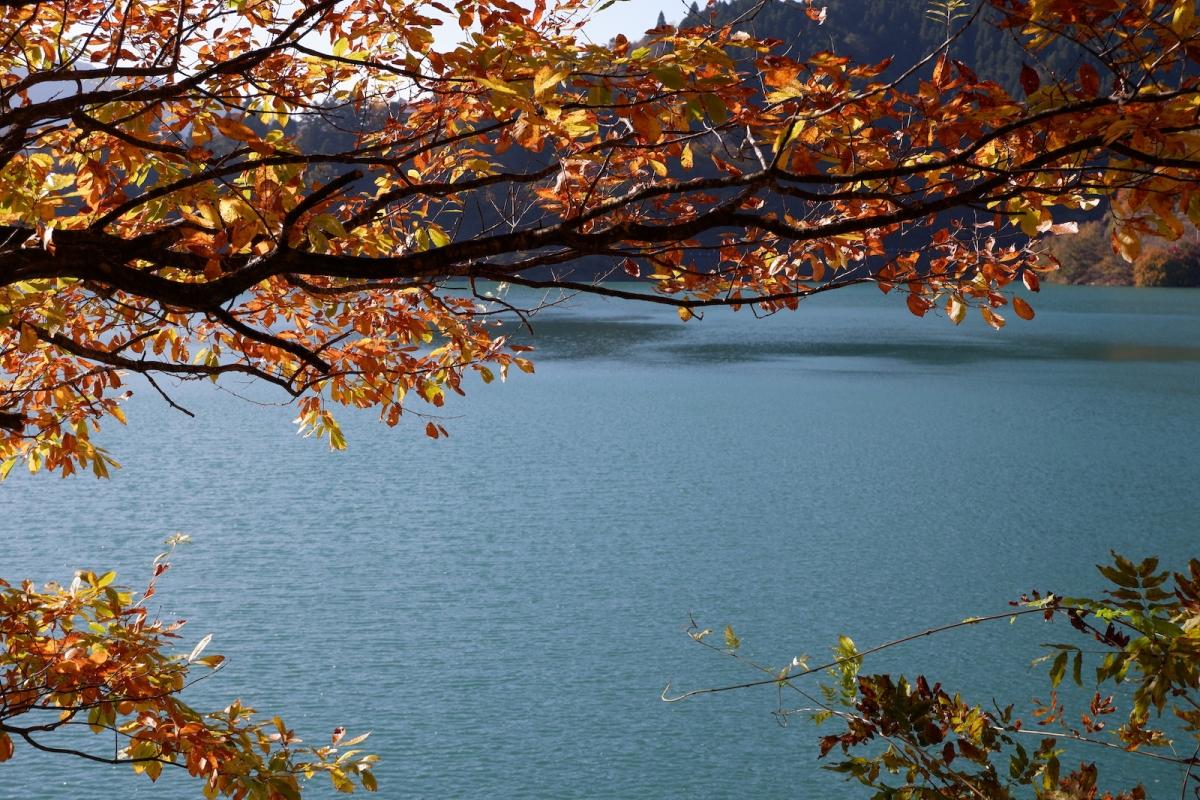 15 lake and colors-okutama-lake–ehk-dscf4557