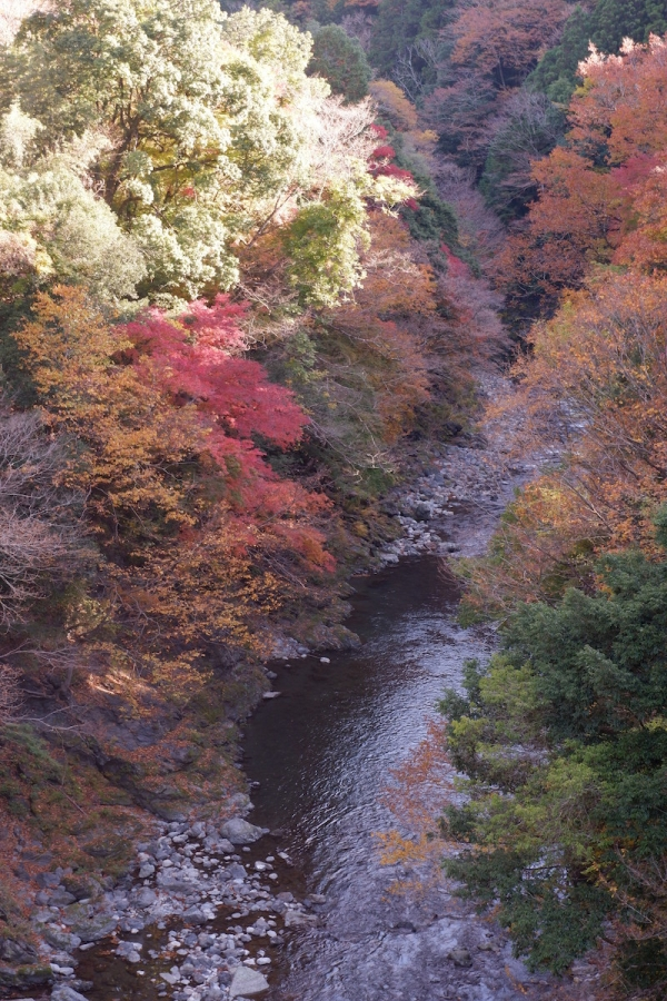 39 river view from bathing-area–ehk-dscf4497