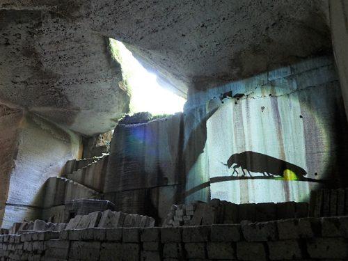 Oyamachi Cave Satoshi Kuribayashi3