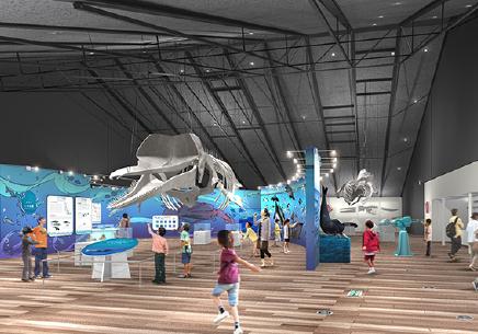 img_oswl Oshika Whale Land exhibition